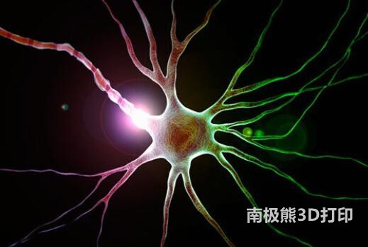 3D打印技术在神经外科的应用研究进展