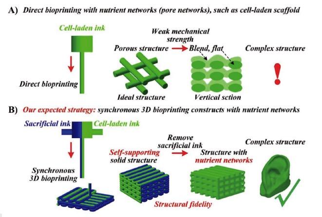 德国纽伦堡大学开展3D打印反应烧结碳化硅新型工艺