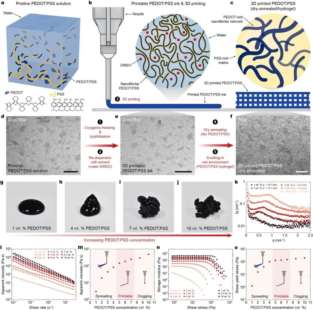 MIT赵选贺团队: 首次高精度3D打印导电聚合物,成功监测单个神经元活动信号!