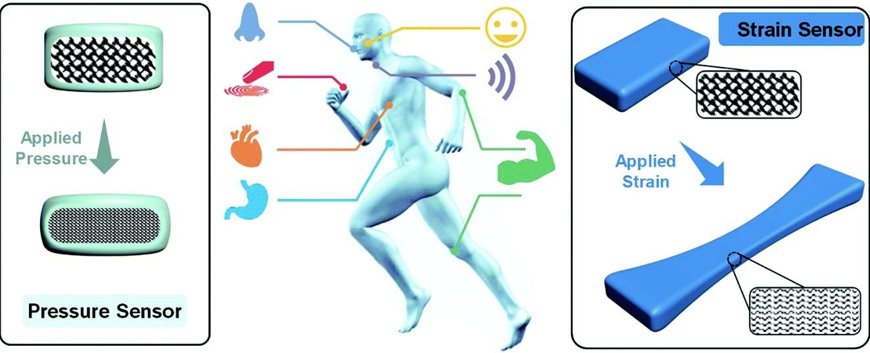 中山大学付俊教授团队导电水凝胶柔性传感器系列进展